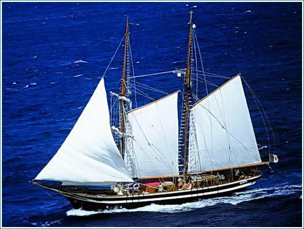 yacht5 - 002